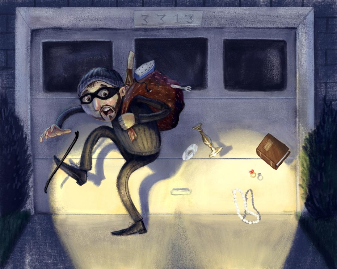 burglar2(1)